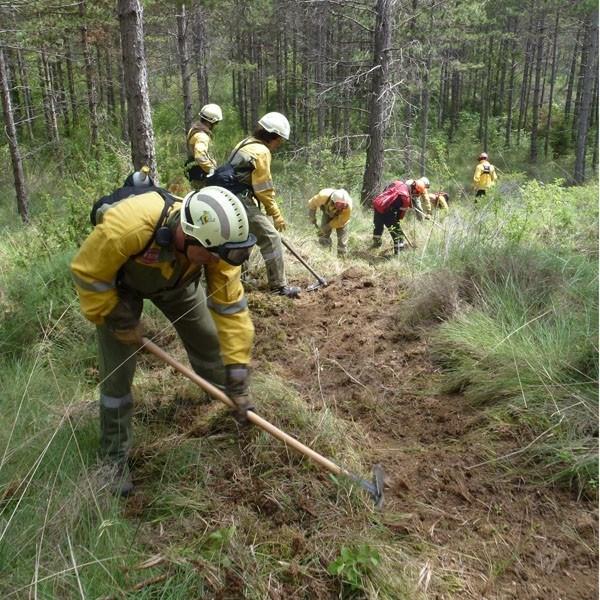 ser-bombero-forestal