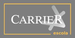 curso-de-programador-java-pc-carrier-logo