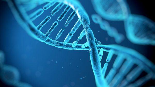 curso-biotecnología-online-adn