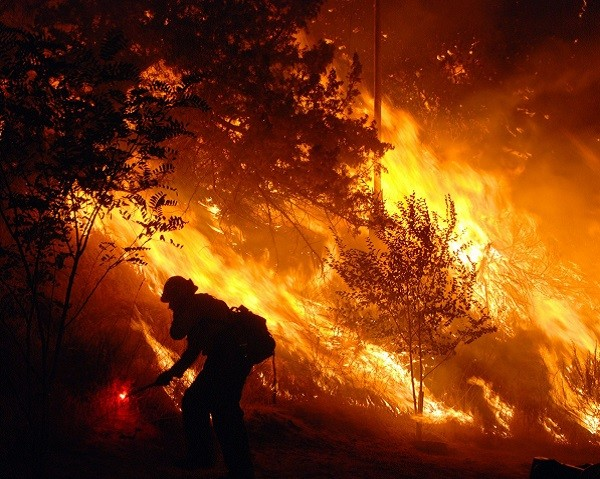 bombero forestal