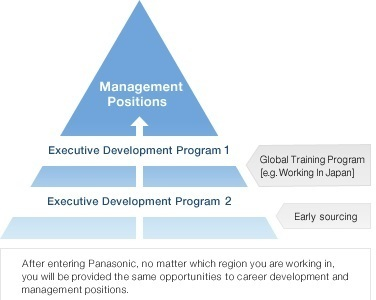 program-for-management-development-pmd-iese-piramide