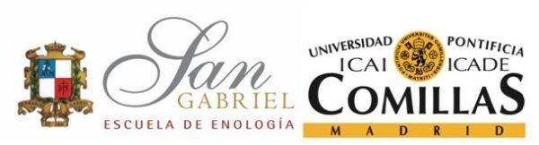 master-en-viticultura-enologa-y-direccin-de-empresas-vitivinicolas-conjunto-logo