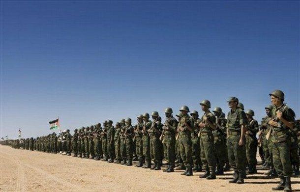 Western Sahara Forgotten Front