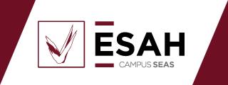 postgrado-de-experto-en-tecnologia-culinaria-sea-logo