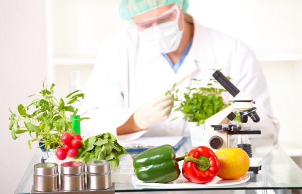 curso-biotecnologia-temario-alimentos-transgenicos