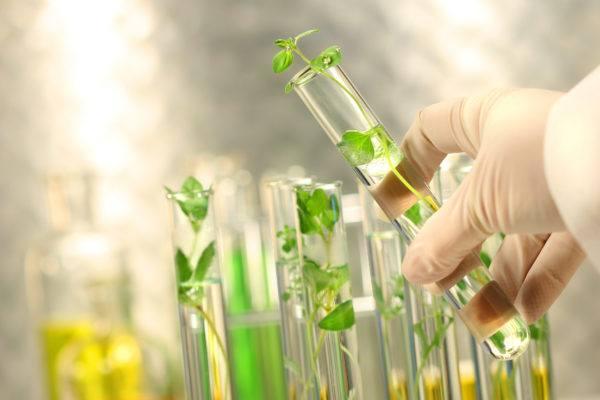 curso-biotecnología-requisitos-medioambiente