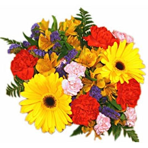 T cnico en jardiner a y florister a cursosmasters for Tecnico en jardineria