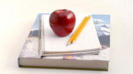 Máster en formación del profesorado: Educación Secundaria, Bachillerato, Formación Profesional e Idiomas 2019