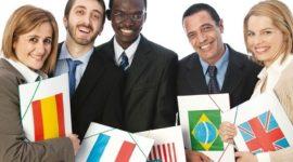 Requisitos para ser Traductor profesional