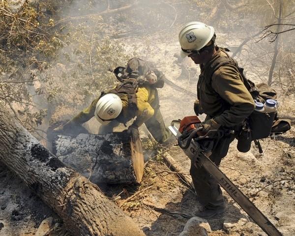 cursos bombero forestal