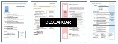 descargar-plantillas-curriculum-cronologico