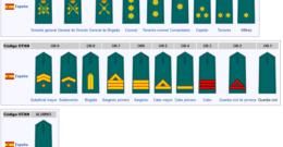 ¿Cuáles son los Rangos de la Guardia Civil?