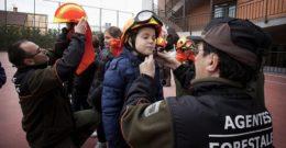 Oposiciones Agente Forestal y Medioambiental en la Comunidad de Madrid y en España