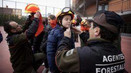 Oposiciones Agente Forestal y Medioambiental 2018 en la Comunidad de Madrid y en España